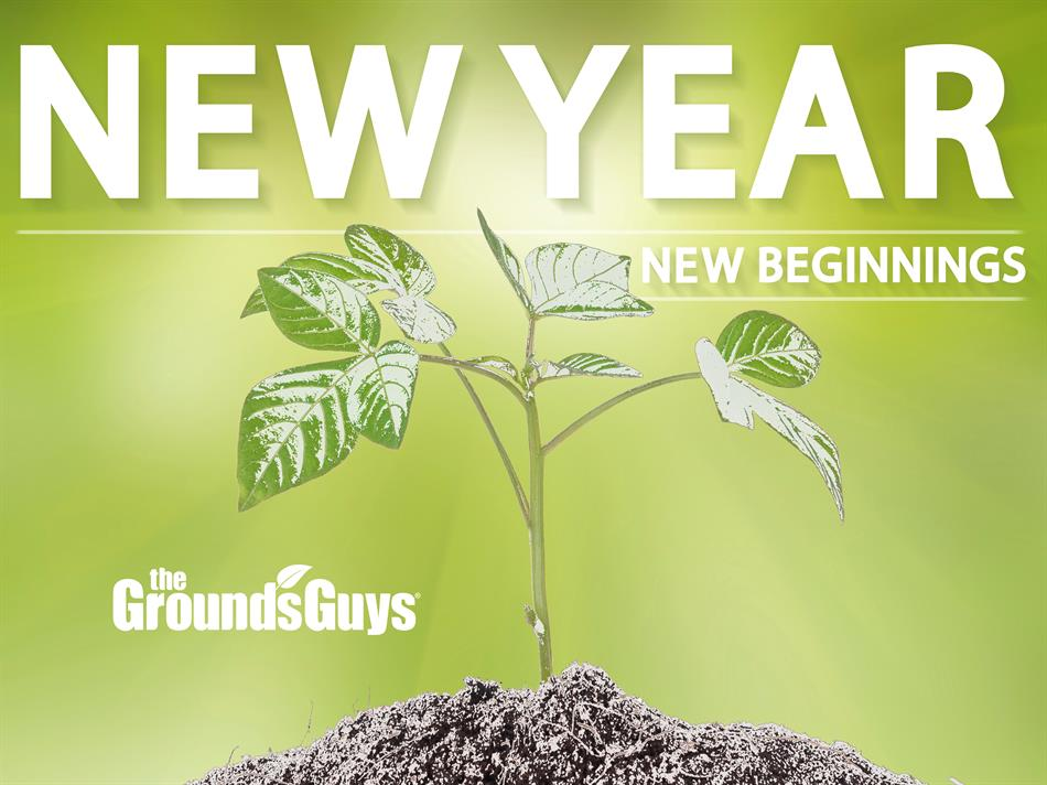 New Year, New Beginnings banner