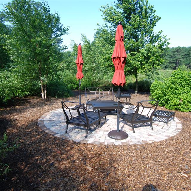 patio furniture on pavers arranged in a circle among trees