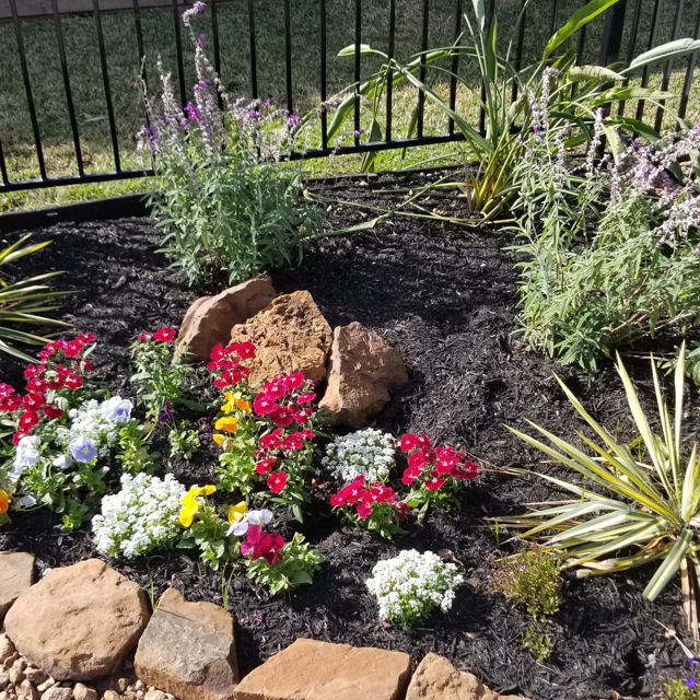 flower bed with stone rim