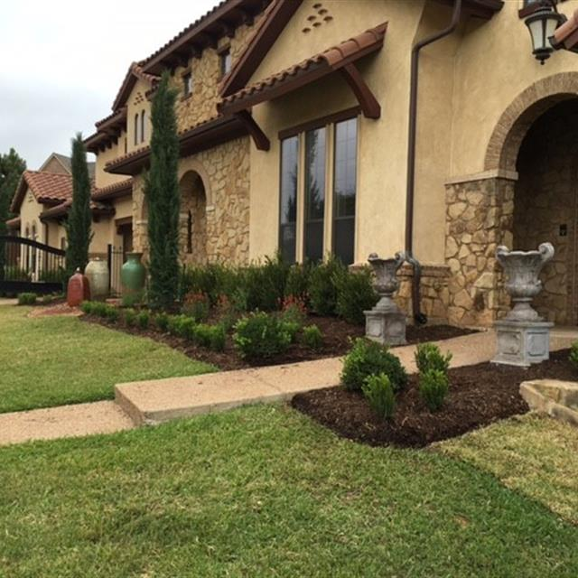 manicured lawn with tuscan landscaping lining the house