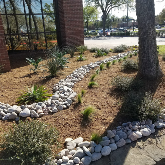 After Transformation Commercial Landscaping with desert plants and decorative rocks