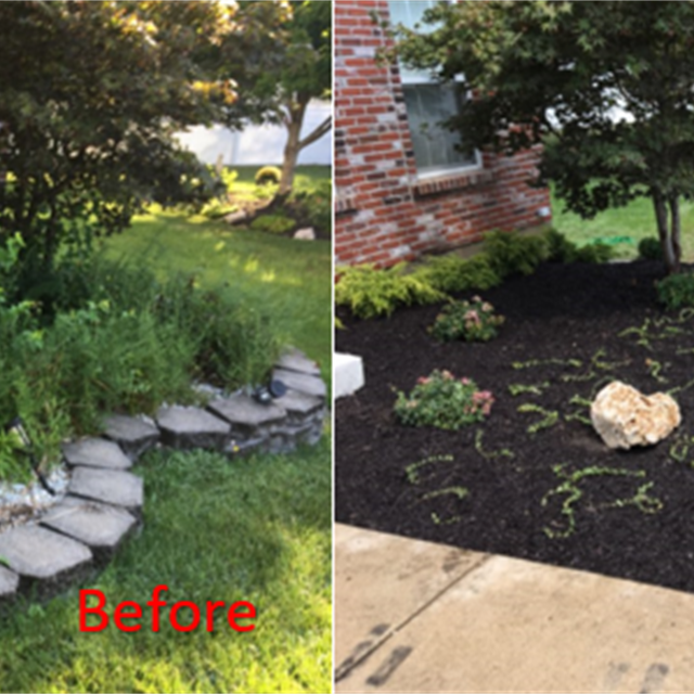 before and after transformation of planter. black mulch, ground covering, rocks and bushes planted