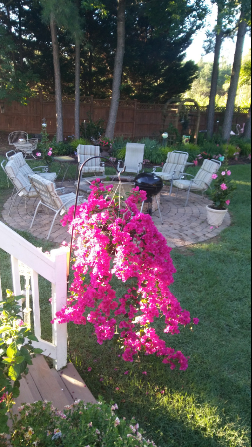 Flowers and outdoor seating area