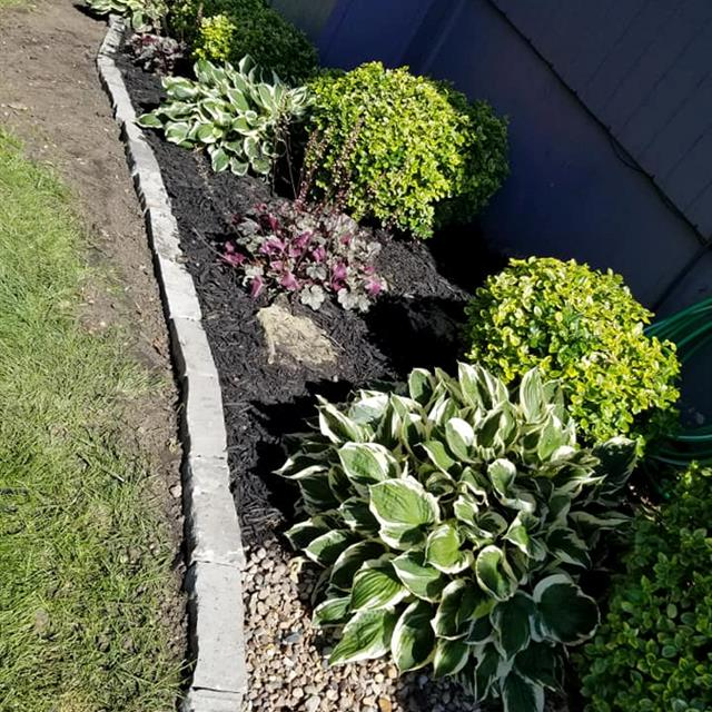 Planter with stone border