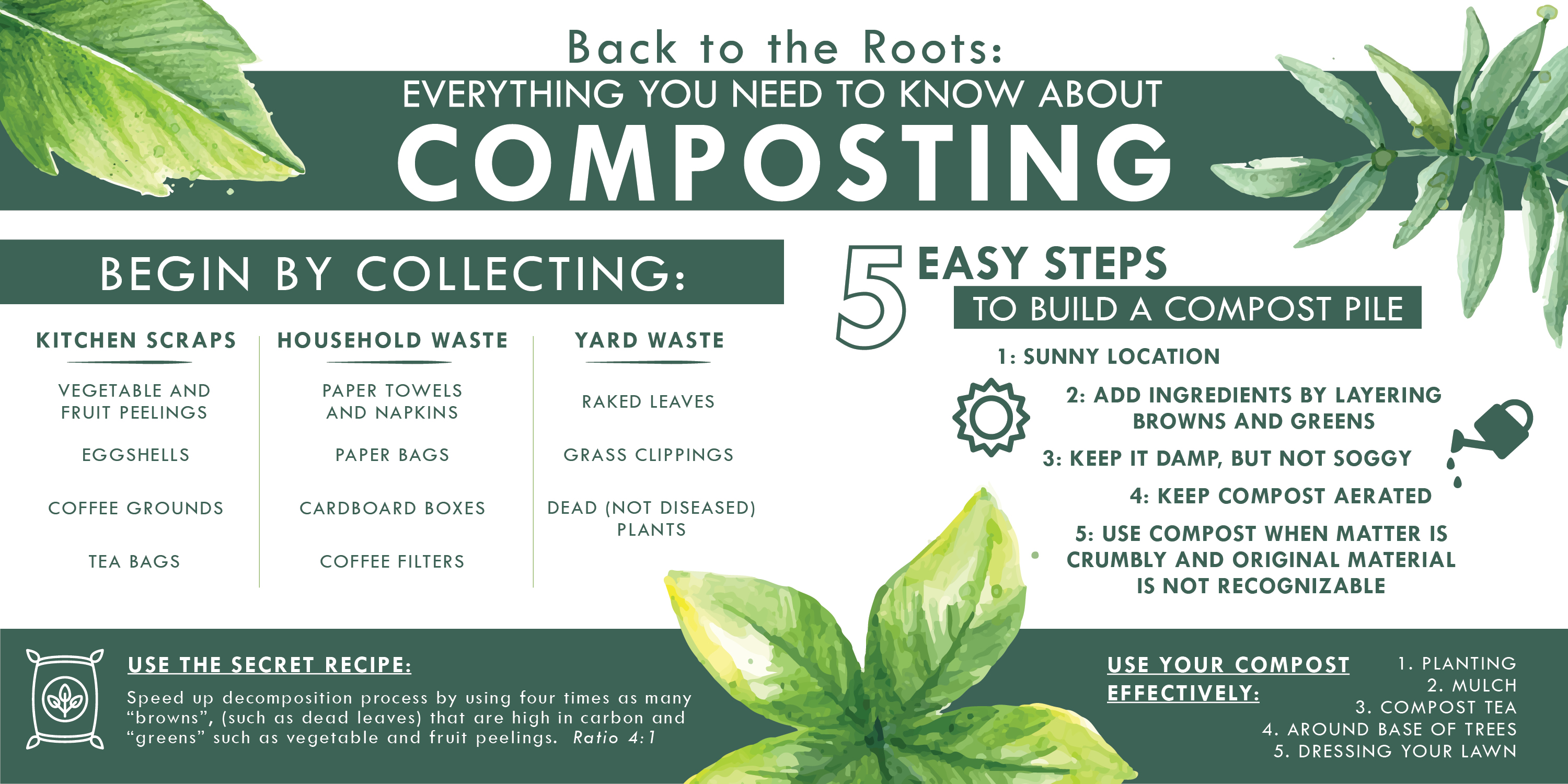 Back to the Roots: Everything You Need To Know About Composting infographic