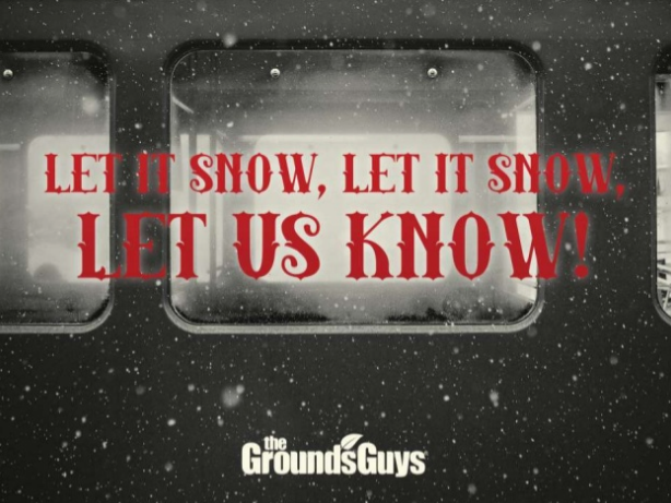 Let It Snow, Let It Snow, Let Us Know! banner