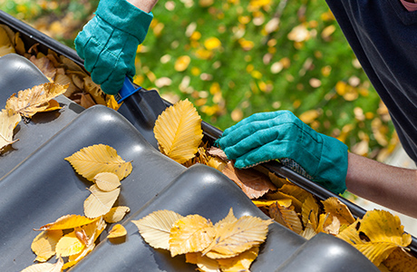 person wearing gloves cleaning leaves out from rain gutter